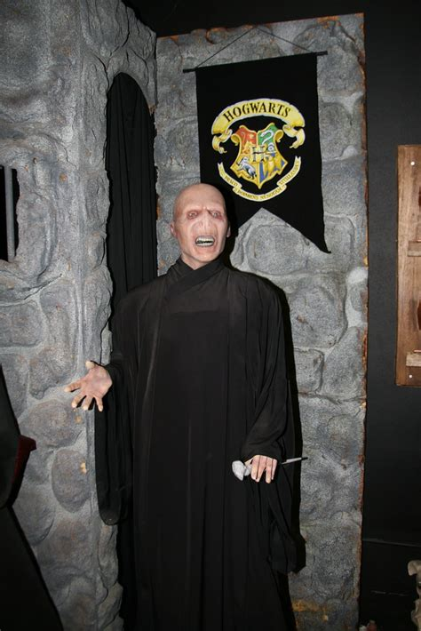 Lord Voldemort   Ralph Fiennes as Lord Voldemort from the