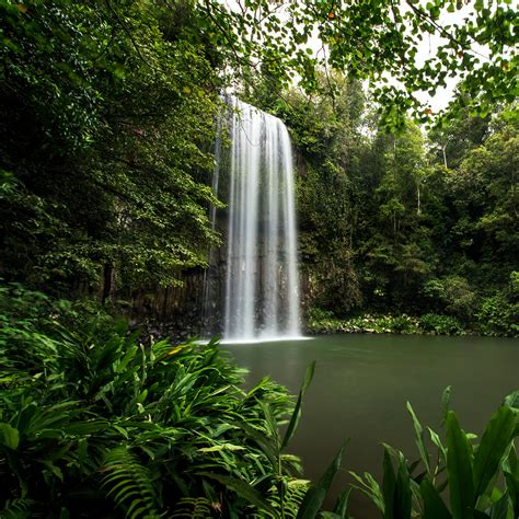 Swimmable Waterfalls | Tropical North QLD