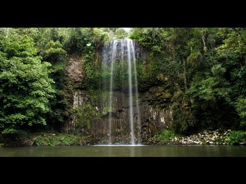 Explore the Atherton Tablelands in 48 Hours | Tropical