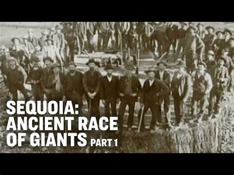 Sequoia -- Ancient Race of Giants -- Part 1 - YouTube